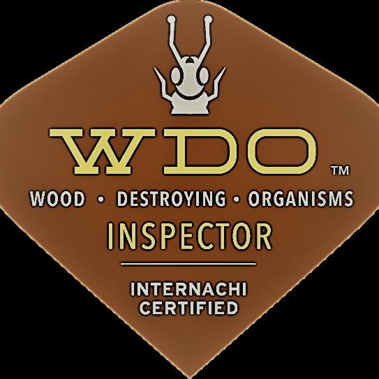 WDOInspector web